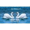 Услуги мага:  любовные привороты,  гармонизация отношений. . .
